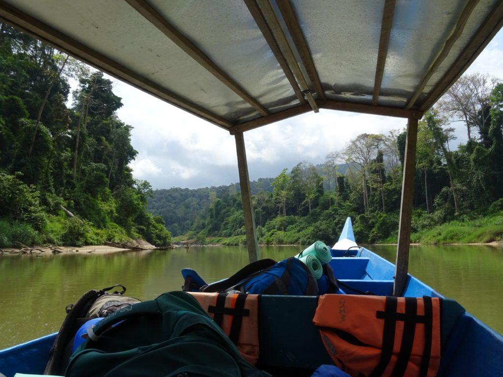 Bootsfahrt in den Dschungel, Taman Negara