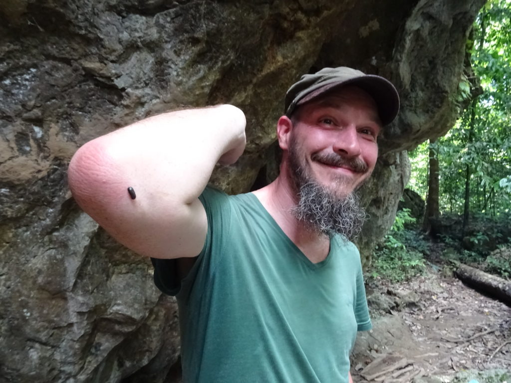 Erste Erfahrungen mit Blutegeln im Taman Negara