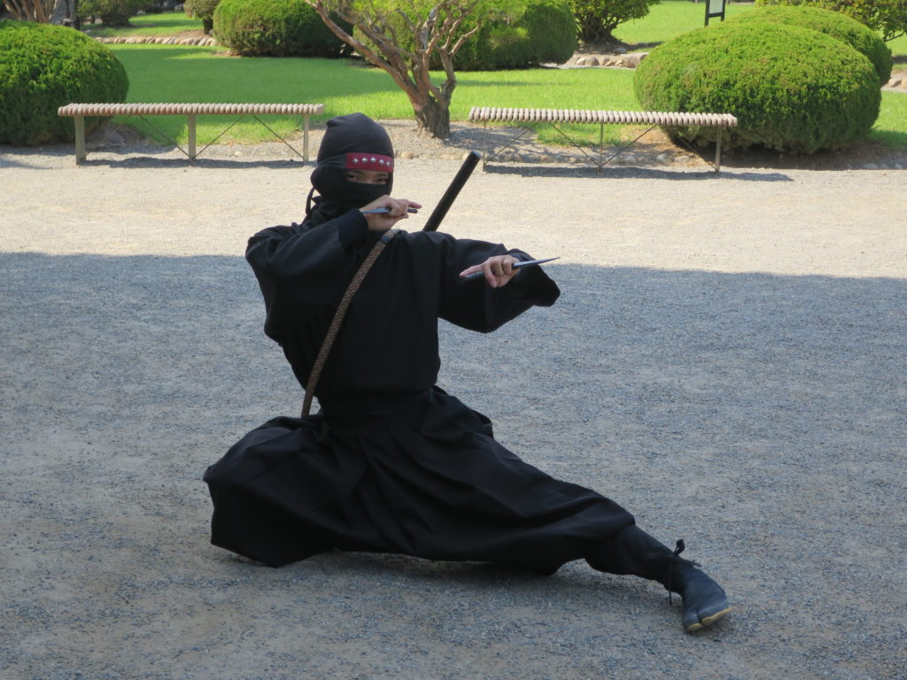 Ninja am Matsumoto Castle